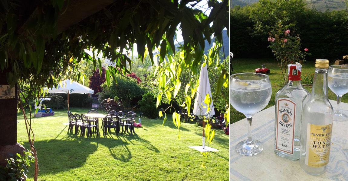 gin-tonics-jardin