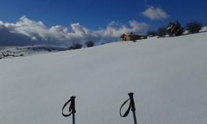 Paseo con nieve por la dehesa