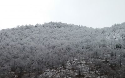 Nieve en el valle y pistas de Valdezcaray abiertas!